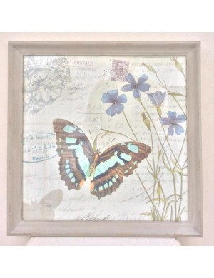 Framework shabby chic  with butterfly and flower print covered with glass and frame dove H 51.5 x L 51.5